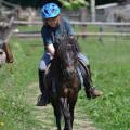 2011-06-04-133718-ponny-skolicka-04